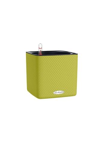 Kräutertopf »Cube Color 16 Grün« kaufen