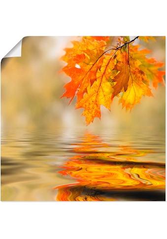 Artland Wandbild »Herbstblatt« kaufen