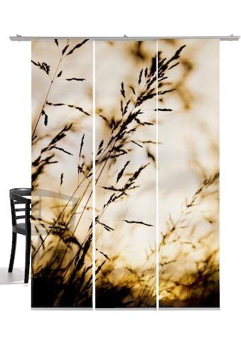 emotion textiles Schiebegardine »Windrausch Sepia«, HxB: 260x60, mit Befestigungszubehör kaufen