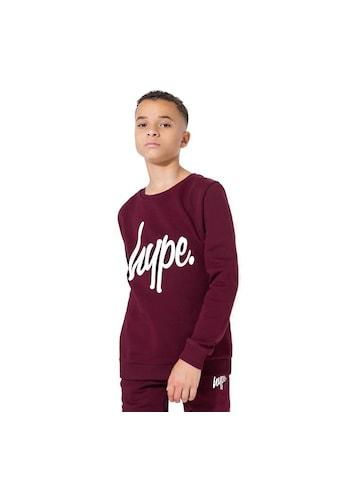 Hype Sweatshirt »Jungen mit Logo - Schriftzug« kaufen