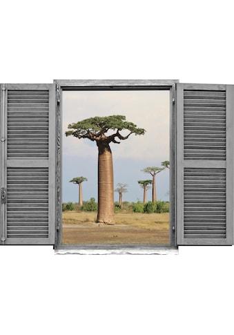 queence Wandtattoo »Afrikanische Baüme« (1 Stück) kaufen