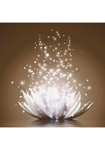 Home affaire Bild »V. Georgiev: Magie der Lotus-Blume« kaufen