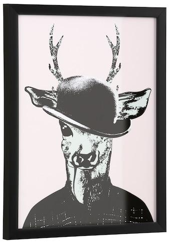 Home affaire Kunstdruck »Reh in Spaziergang - Kleidung« kaufen