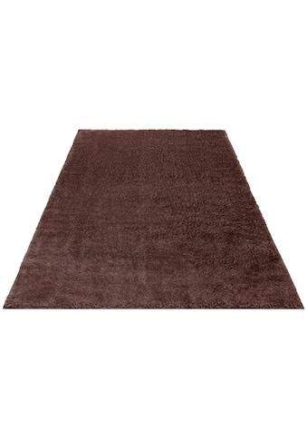 my home Hochflor-Teppich »Mikro Soft Ideal«, rechteckig, 30 mm Höhe, Besonders weich durch Microfaser, extra flauschig, Wohnzimmer kaufen