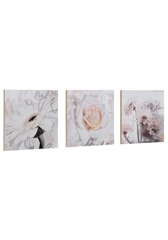 Home affaire Kunstdruck »S., D.: Gerberas Detail« acheter
