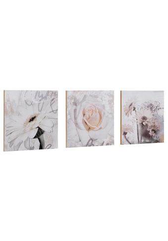 Home affaire Kunstdruck »S., D.: Gerberas Detail« kaufen