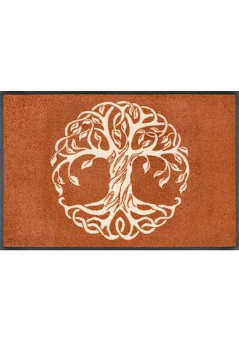 wash+dry by Kleen-Tex Fussmatte »Tree of Life«, rechteckig, 7 mm Höhe,... kaufen