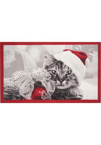Fussmatte, »Christmas Cat«, HANSE Home, rechteckig, Höhe 7 mm, maschinell getuftet kaufen