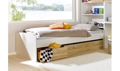rauch BLUE Bettschubkasten, 3-teilig kaufen