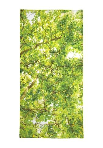 Juniqe Strandtuch »Hazel Tree«, (1 St.), Weiche Frottee-Veloursqualität kaufen