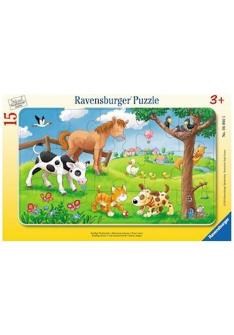 Ravensburger Puzzle »Knuffige Tierfreunde« kaufen