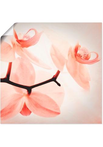 Artland Wandbild »Orchidee abstrakte Collage II«, Blumen, (1 St.) kaufen