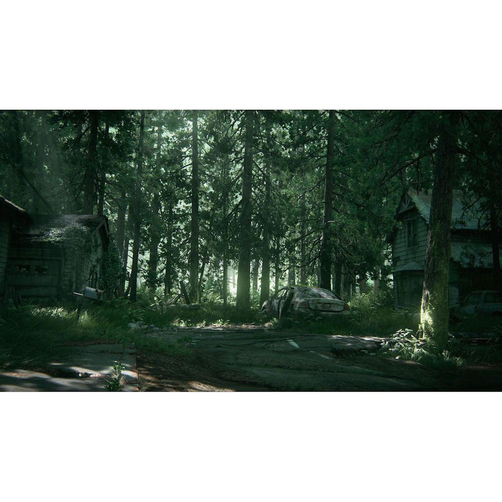 Spiel »The Last of Us Part II - Speci«, PlayStation 4, Special Edition