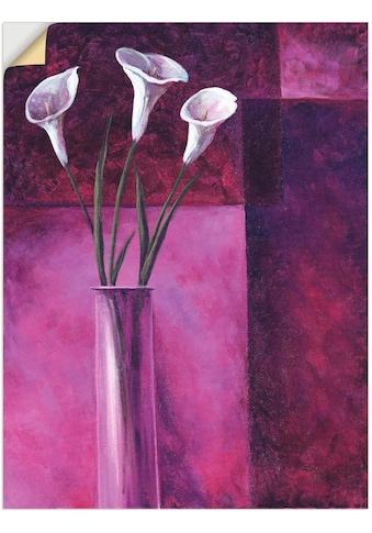 Artland Wandbild »Callas Lila«, Blumen, (1 St.), in vielen Grössen & Produktarten - Alubild / Outdoorbild für den Aussenbereich, Leinwandbild, Poster, Wandaufkleber / Wandtattoo auch für Badezimmer geeignet kaufen
