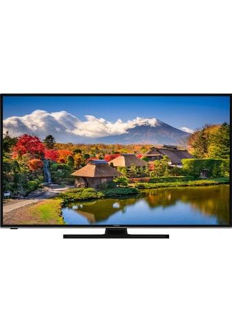 TV, Hitachi, »50HK6100« kaufen