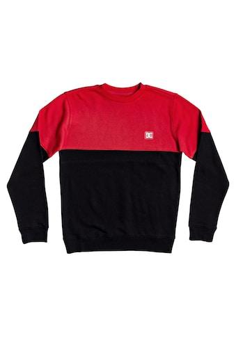 DC Shoes Sweatshirt »Rebel« acheter