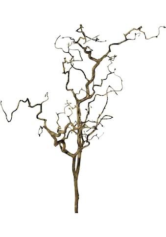 Creativ green Kunstzweig »Zweig Korkenzieherhasel« kaufen