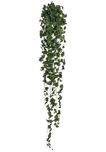 Creativ green Kunstpflanze »Englischer Efeuhänger« (1 Stück) kaufen