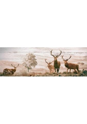 Reinders! Deco-Panel »Hirsche«, 156/52 cm kaufen