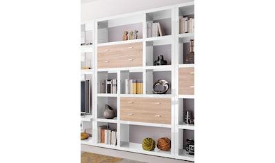 HMW Collection Regal »Space«, Breite 123 cm kaufen