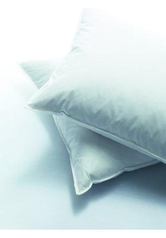billerbeck 3-Kammer-Kopfkissen »Casa Wool«, Füllung: Aussen: 90% neue, reine, europäische Gänsedaunen, weiss. 10% Federchen, VSB-Norm Innen: 100% Schurwolle, Faserbällchen, Bezug: 100% Baumwolle, (1 St.) kaufen