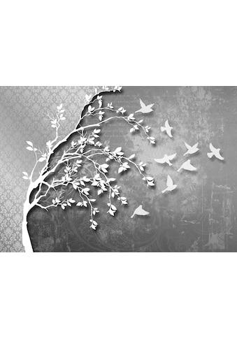 CONSALNET Vliestapete »Silberfarben Baum mit Vögeln«, verschiedene Motivgrössen, für das Büro oder Wohnzimmer kaufen