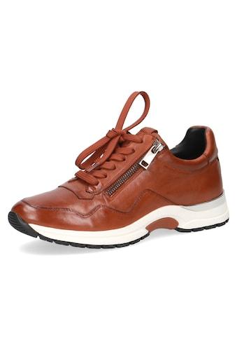 Caprice Sneaker, mit praktischem Aussenreissverschluss kaufen