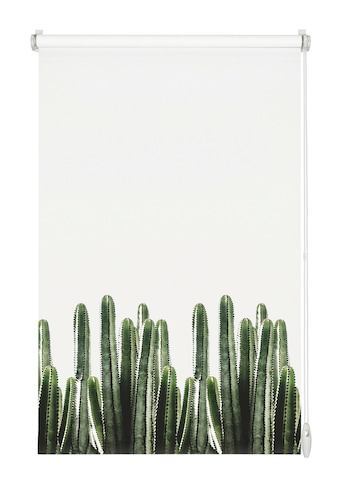 Seitenzugrollo »EASYFIX Rollo Dekor Kaktus«, GARDINIA, Lichtschutz, ohne Bohren kaufen