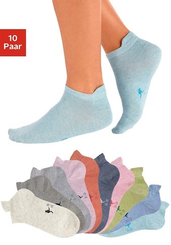 KangaROOS Sneakersocken, (10 Paar), mit erhöhter Ferse kaufen