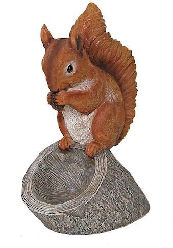 Casa Collection by Jänig Tierfigur »Eichhörnchen mit Vogeltränke, Höhe ca. 31,7cm« kaufen