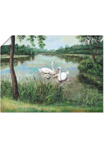 Artland Wandbild »Schwäne« kaufen