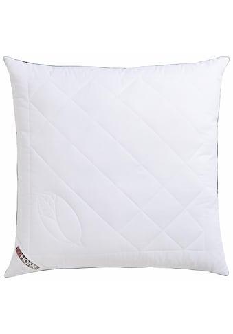 Kunstfaserkopfkissen, »Jubu Mais«, my home, Füllung: 100% Polylactid - Faser (Maisvlies), Bezug: 100% Baumwolle kaufen