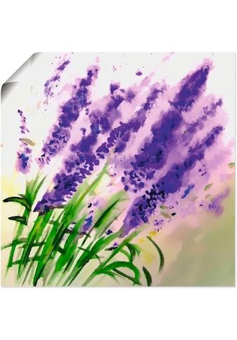 Artland Wandbild »Lavendel-aquarell«, Blumen, (1 St.), in vielen Grössen & Produktarten -Leinwandbild, Poster, Wandaufkleber / Wandtattoo auch für Badezimmer geeignet kaufen