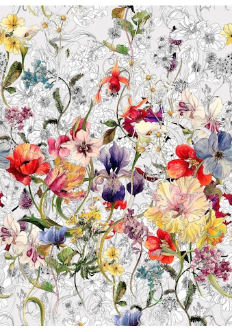 KOMAR Fototapete »Flora« kaufen