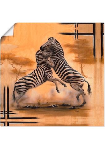 Artland Wandbild »Zebra - Kampf« kaufen