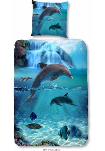 good morning Kinderbettwäsche »Flipper«, mit Delfinmotiv kaufen