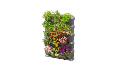 GARDENA Bewässerungssystem »Set Vertikal mit Bewässerung« kaufen