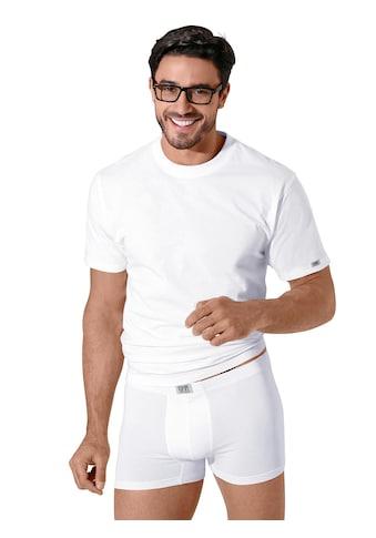 KUMPF Panty kaufen
