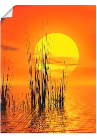 Artland Wandbild »Sonnenuntergang mit Schilf« kaufen
