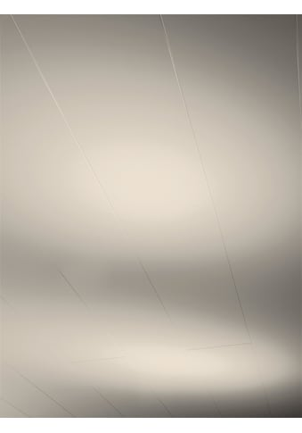 PARADOR Verkleidungspaneel »RapidoClick«, Taupe seidenmatt, 5 Paneele, 1,427 m² kaufen