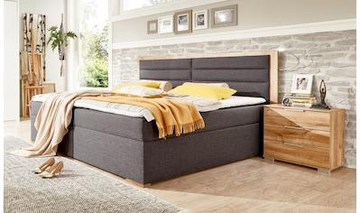 Wimex Polsterbett »Orlando«, mit Bettkasten kaufen