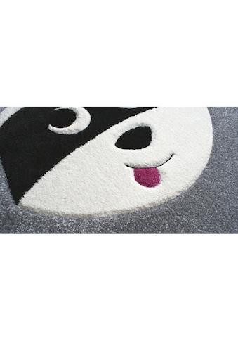 Teppich »Waschbär Mukki«, quadratisch, - mm Höhe kaufen
