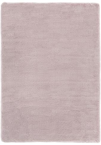 Fellteppich, »Novara«, Andiamo, rechteckig, Höhe 35 mm, maschinell gewebt kaufen