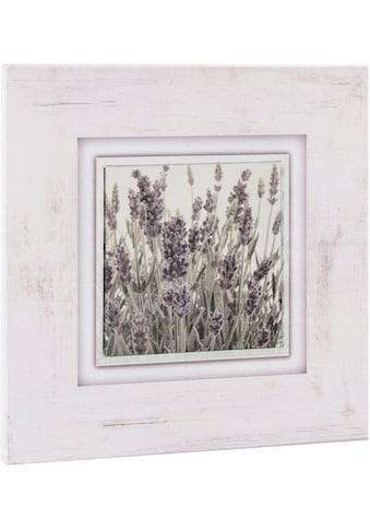 Home affaire Holzbild »Lavendel« acheter