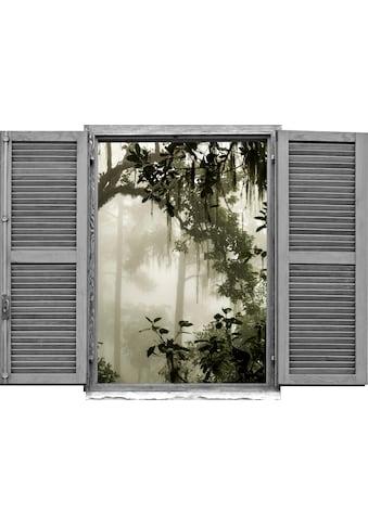 queence Wandtattoo »Dschungel« kaufen