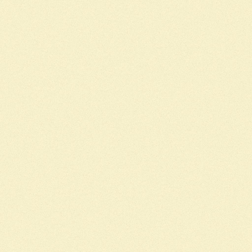 GARDINIA Schiebegardine »Flächenvorhang Stoff Uni«, HxB: 245x60