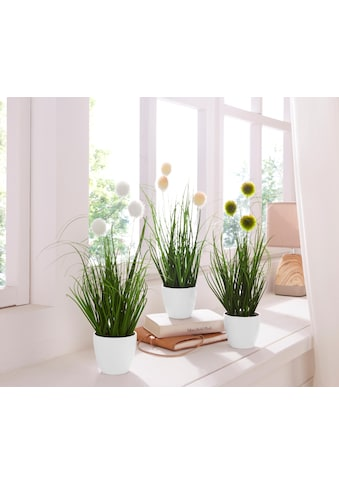 Creativ green Kunstgras »Grasbusch« (Set, 3 Stück) kaufen