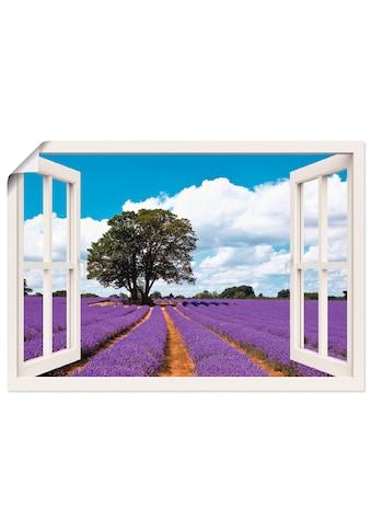 Artland Wandbild »Fensterblick Lavendelfeld im Sommer«, Fensterblick, (1 St.), in... kaufen