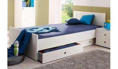 Wimex Bett »Filou« kaufen